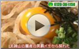 other-「札幌テレビ放送」